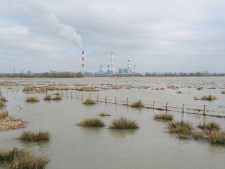 Pour (ré)écouter l'intervention du GIP Loire Estuaire de ce midi sur France Bleu, rendez-vous sur le lien ci-dessous :