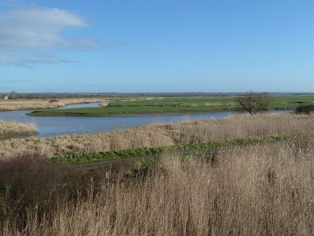 Etier de Lavau et marais estuariens où alternent prairies et roselières