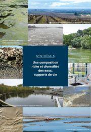 L'essentiel sur la Loire, de la Maine à la mer - Synthèse 5