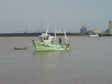 Pêche à la civelle dans l'estuaire de la Loire