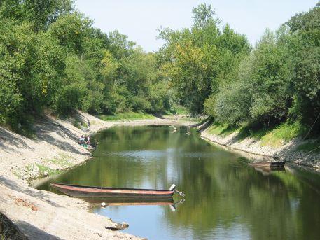 Bras de la Guesse, bras secondaire en amont de Montjean-sur-Loire