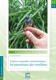 L2.C4 - Espèces exigeantes caractéristiques : les passereaux des roselières (2009)