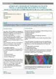 Apports de l'orthoimage infrarouge couleur (IRC) pour la cartographie des habitats naturels