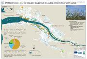 Cartographie 2013-2016 des roselières de l'estuaire de la Loire, entre Nantes et Saint-Nazaire